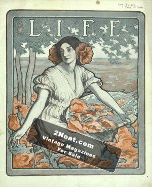 LIFE 1904