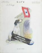 Life-Magazine-1918-02-28