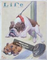 Life-Magazine-1930-07-18