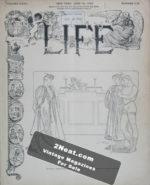 LIFE-Magazine-1900-06-14