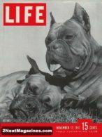 Life Magazine November 17, 1947