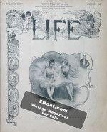 Life Magazine – July 25, 1895