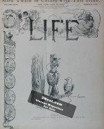 Life Magazine – July 13, 1905