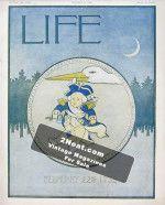 Life Magazine - February 21, 1907