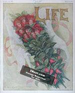 Life Magazine – May 2, 1907