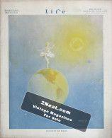 Life Magazine – November 13, 1913