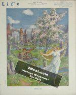 Life Magazine – May 8, 1919