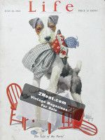 LIFE-Magazine-1921-07-28