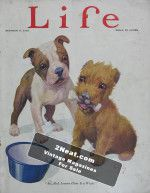 Life Magazine – October 8, 1925