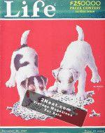 LIFE-Magazine-1927-12-22