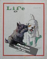 Life Magazine – June 14, 1929