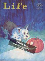 Life Magazine – October 23, 1931